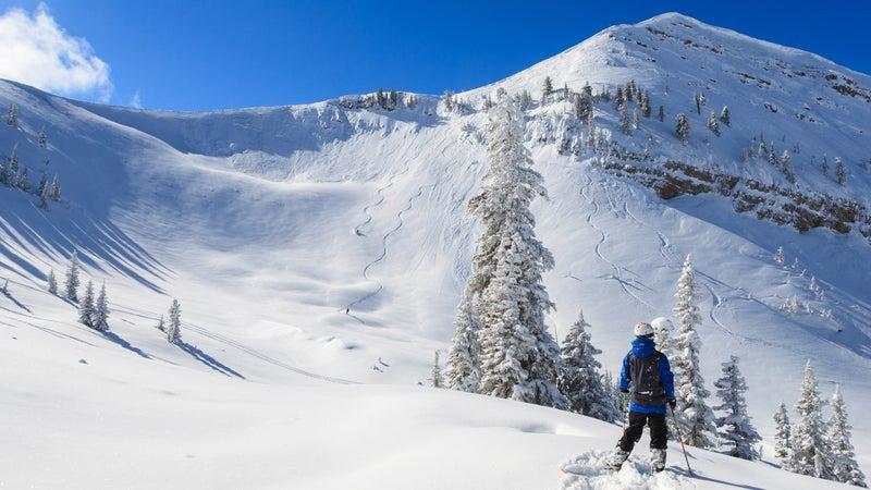 Skiers Paradise