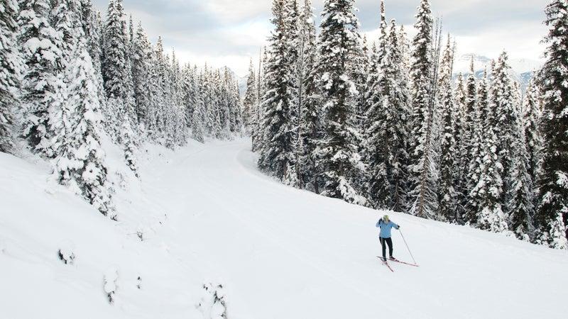 A young woman skate skis near Moraine Lake, Banff National Park.