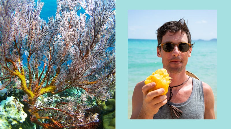 Left, the Great Barrier Reef; right, the author eating a mango on Whitehaven Beach
