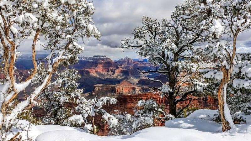 Grand Canyon Snow 2