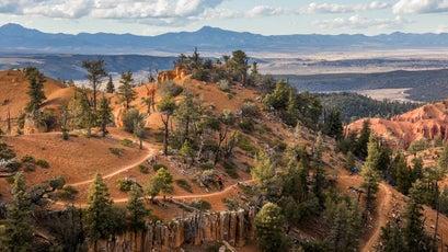 Mountain biking in Red Canyon.
