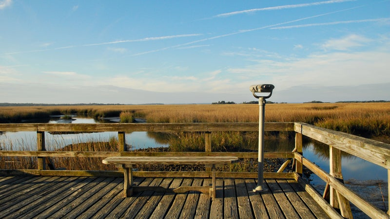Marsh viewer and bench
