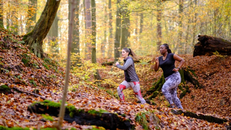 Saturday Sport In the Sonian Forest