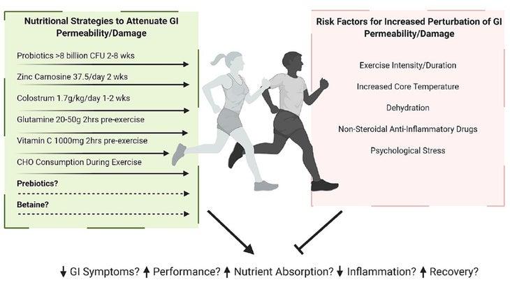 Nutritional strategies chart