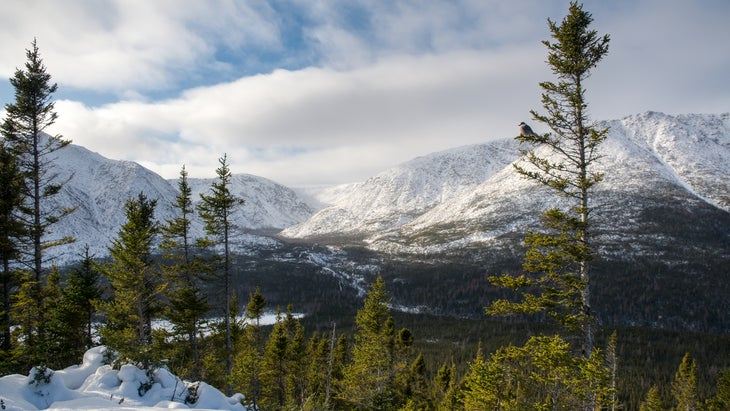 Mount Albert seen from point of view with foreground on a cold winter day, Gaspesie national park, Quebec, Canada