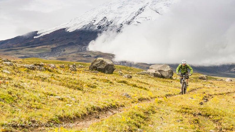 Andes Ecuador South America birds birdwatching tour tourism