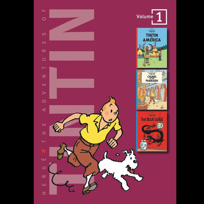 The original graphic novels, this series recounts the peril-filled exploits of Tintin, boy reporter, and his snarky little dog, Snowy. Start with The Crab with the Golden Claws: opium smugglers, plane crashes, marauding Bedouins, and a demented, alcoholic sea captain who mistakes Tintin for a giant bottle of champagne. What's not to love?