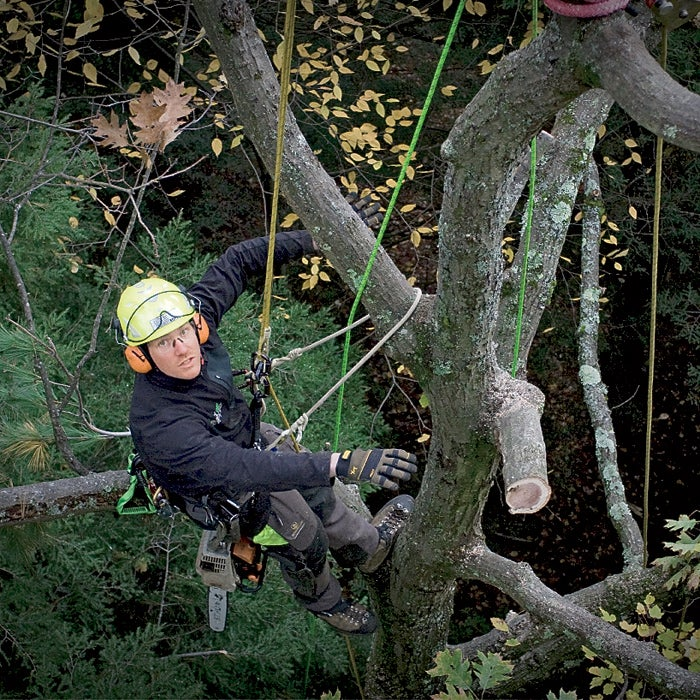 Arbor One Buckingham Ed Carpenter Ergovation Freesolo Photography. www.frees NEISA Sterling Sterling Rope VT Vermont Youngstown Gloves arborculture arborist rope access arborist job find how apply