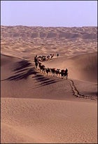 A line in the sand: Mike Libecki and the expedition team trek towards a distant sand ridge.
