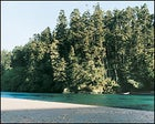 Spare those trees: second-growth forests line the far bank of the Big River.
