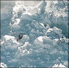 Aftershock: a copter surveys an avalanche in Rainier's Disappointment Cleaver.