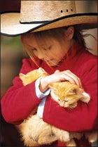 A kitten wrangler at Sundance Trail Guest Ranch