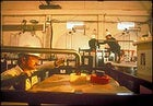 Making ethanol, Courtesy Iogen Corporation
