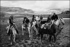 absaroka mountains, horseback riding