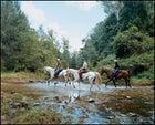 horseback queensland