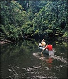 Gabon National Parks