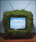 Greening of Hollywood