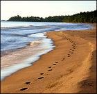 Following the leader: Lake Superior's sandy coast