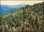 The Vista, near Weaverville, Trinity Alps, California