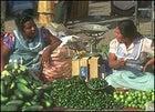 Fruit and pepper venders in Oaxaca