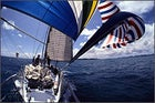 Red, white, and you: sailing Florida's ocean blue