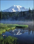 Try studying with this view out the window: Washington's Mount Rainer