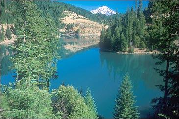 Mount Shasta peaks over the Cascade landscape