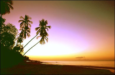Tobago's blemish-free horizon