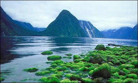 A SOUND PLAN: Circumnavigating New Zealand's South Island