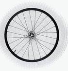 Easton Haven Carbon Wheel