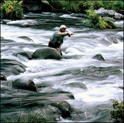 Elk Creek – Bristol Bay