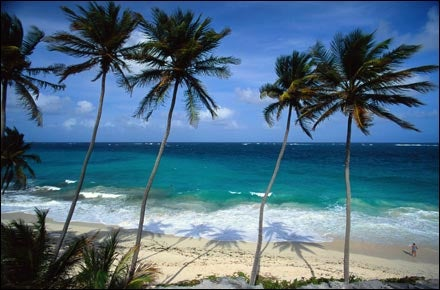 Rincon Beach