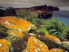 A remote Falkland island is the set for your own (untelevised) drama.