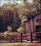 Cottage industries: Steinhatchee lodging