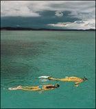 Flippering out near La Parguera