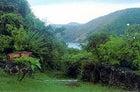 Paradise this way: trailhead on Guana Island