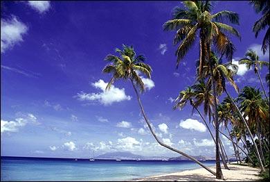 Caribbean Resort, Nevis