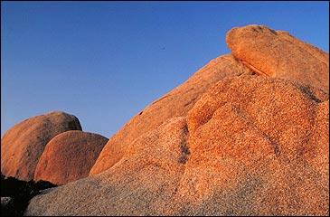 national park: Joshua Tree National Park