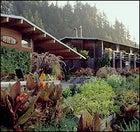 romantic adventure travel, Oregon