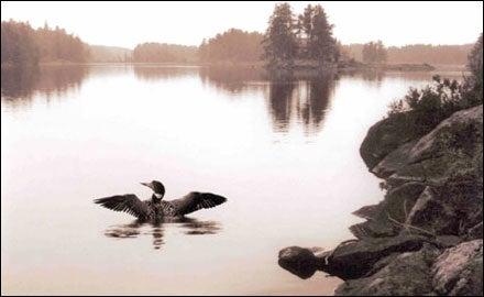 Minnesota's Boundary Waters Canoe Area