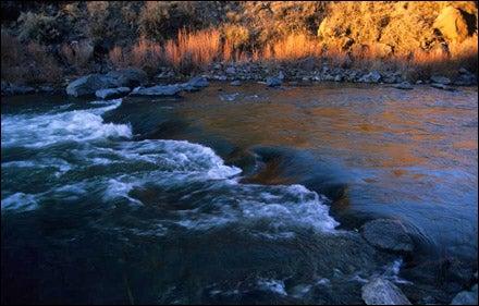 Rio Grande, Taos