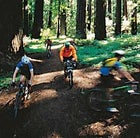 Redwoods riders on the Lost Coast, south of Eureka