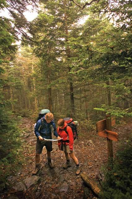 The Long Trail in Warren, Vermont