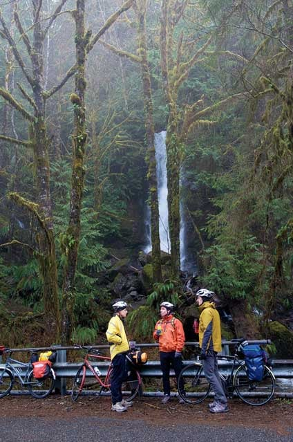 Pacific Coast Route in Washington's Quinault Valley