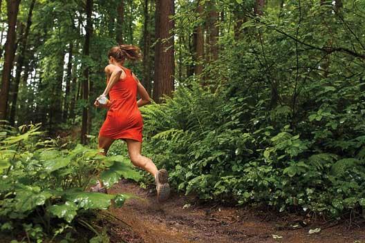Portland's Wildwood Trail