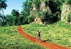 Hot Wheels: the Rocky MF trail in the El Choco National Park, Dominican Republic