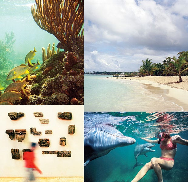 Clockwise: a beach in Roatán; swimming with dolphins; archaeological artifacts; life underwater