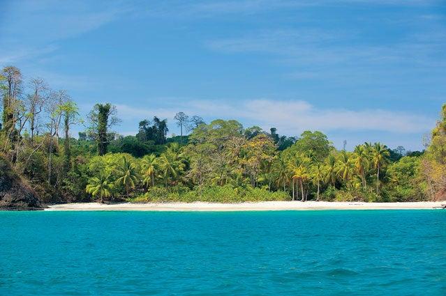 Isla Pargo, Panama