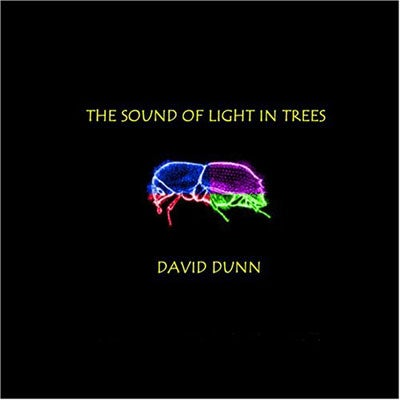 The Sound of Light in Trees