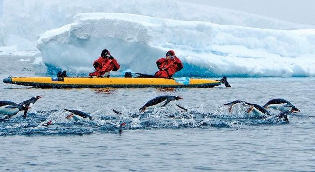 An up-close view of the Antarctic